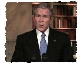 Bush on TV