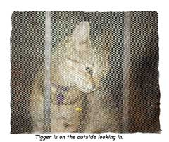 Banished Tigger